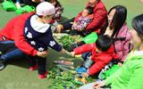潍坊博苑举办抢菜活动 共享亲子快乐时光.jpg