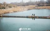 虞舜公园状元湖西岸续建提升工程开工.jpg