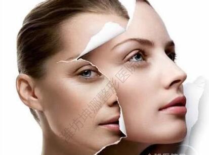 面部皮肤层次结构
