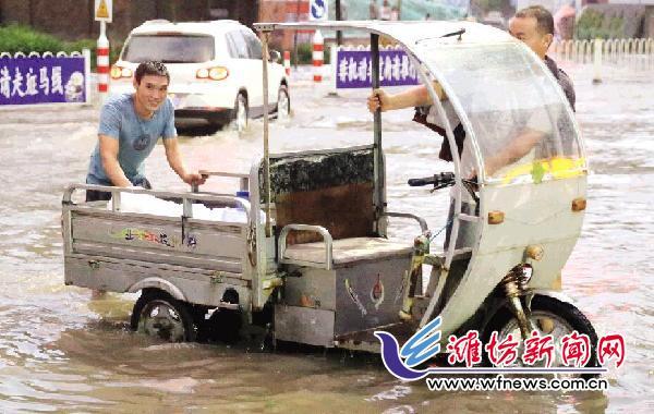 潍坊城区突然出现大规模降雨天气 不少树木被刮倒